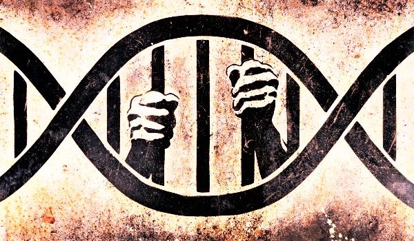 adn-prizonier (3)